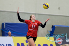 2020926_Damm_Volleyball_1048