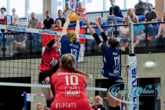 2020913_Damm_Volleyball_2115