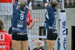 2020913_Damm_Volleyball_2295