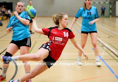 Handball Pokalhalbfinale: SG Bergedorf/VM – AMTV Hamburg II 22:18