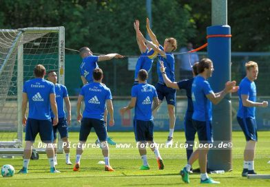 HSV Training im Volkspark